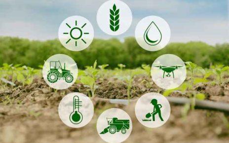 Restrukturyzacja małych gospodarstw rolnych – kto może się starać o dotację w 2019 roku?